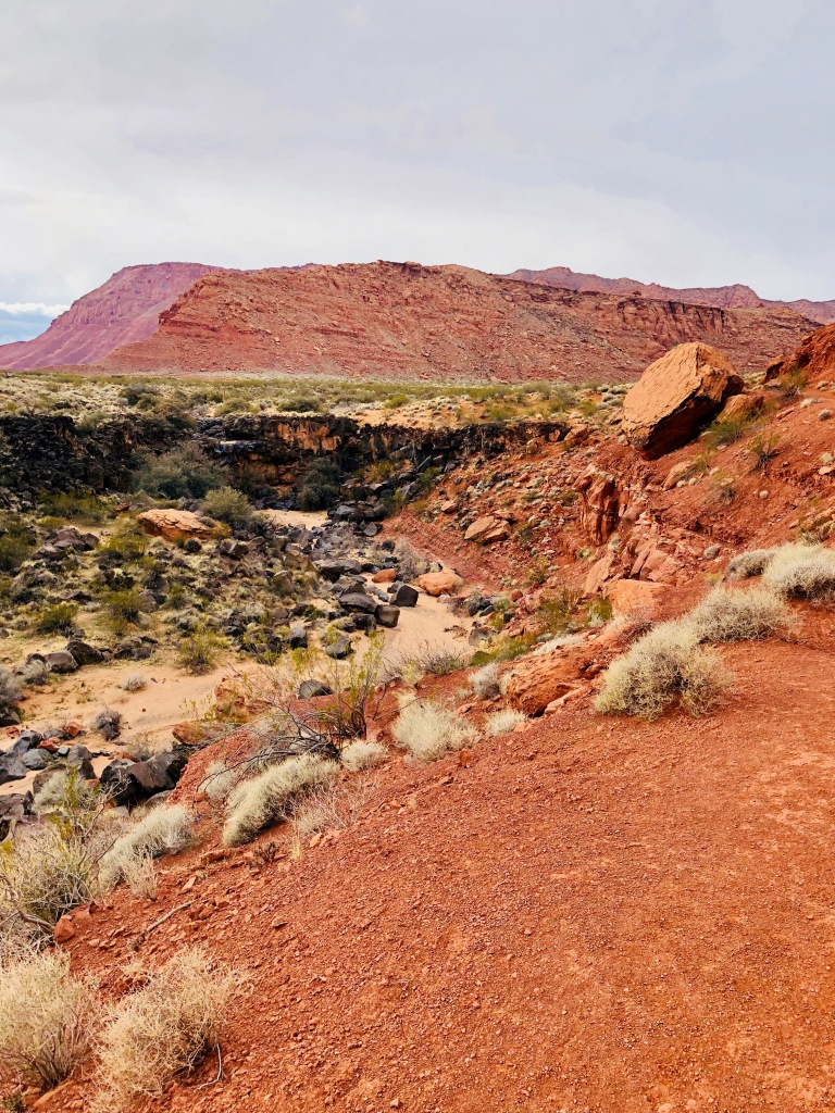 Johnson Canyon Trail at Snow Canyon State Park Utah